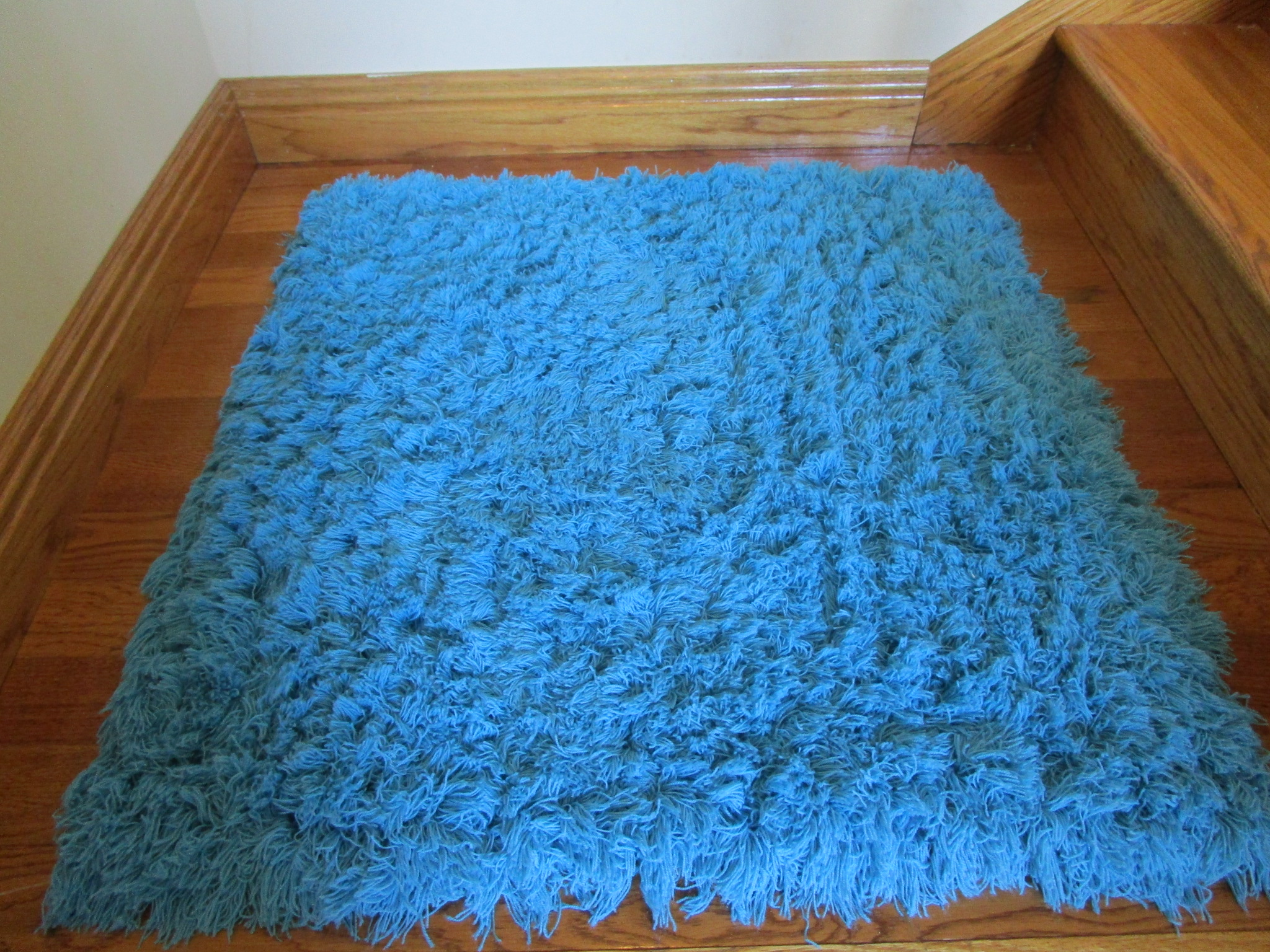 Carribbean Shag Rugs