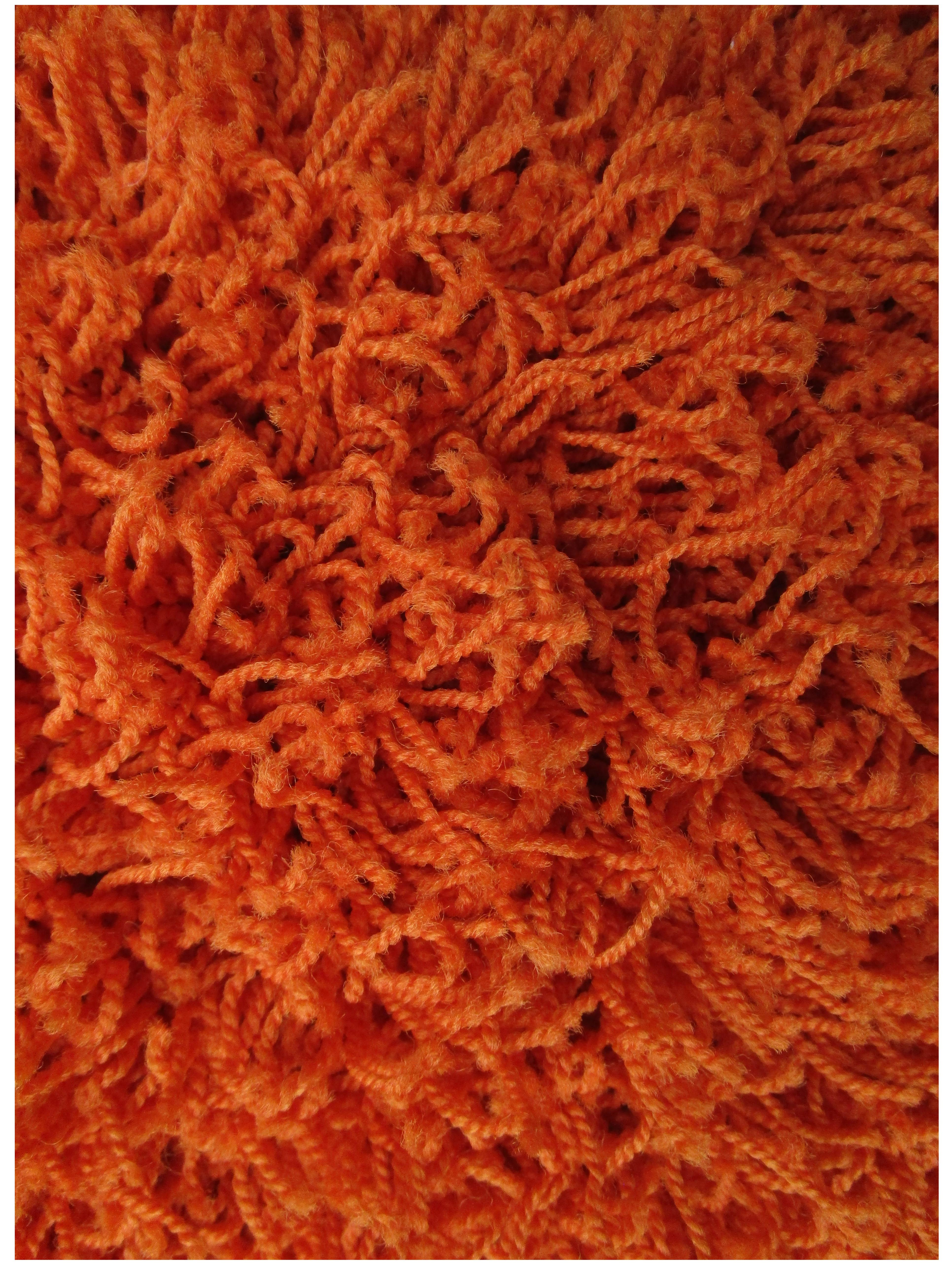 Burnt Orange Shag Rug