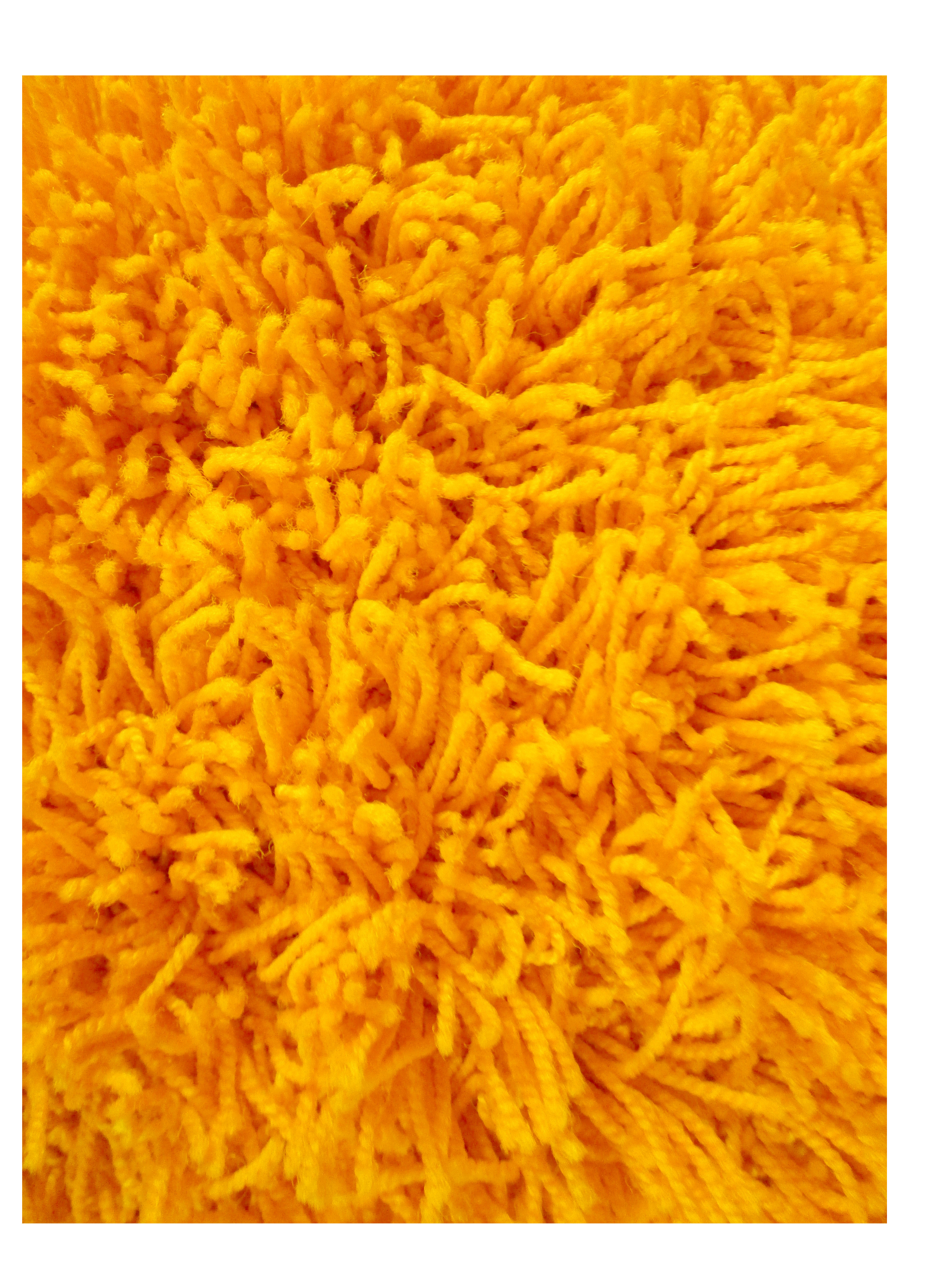 Orange Shag Rugs