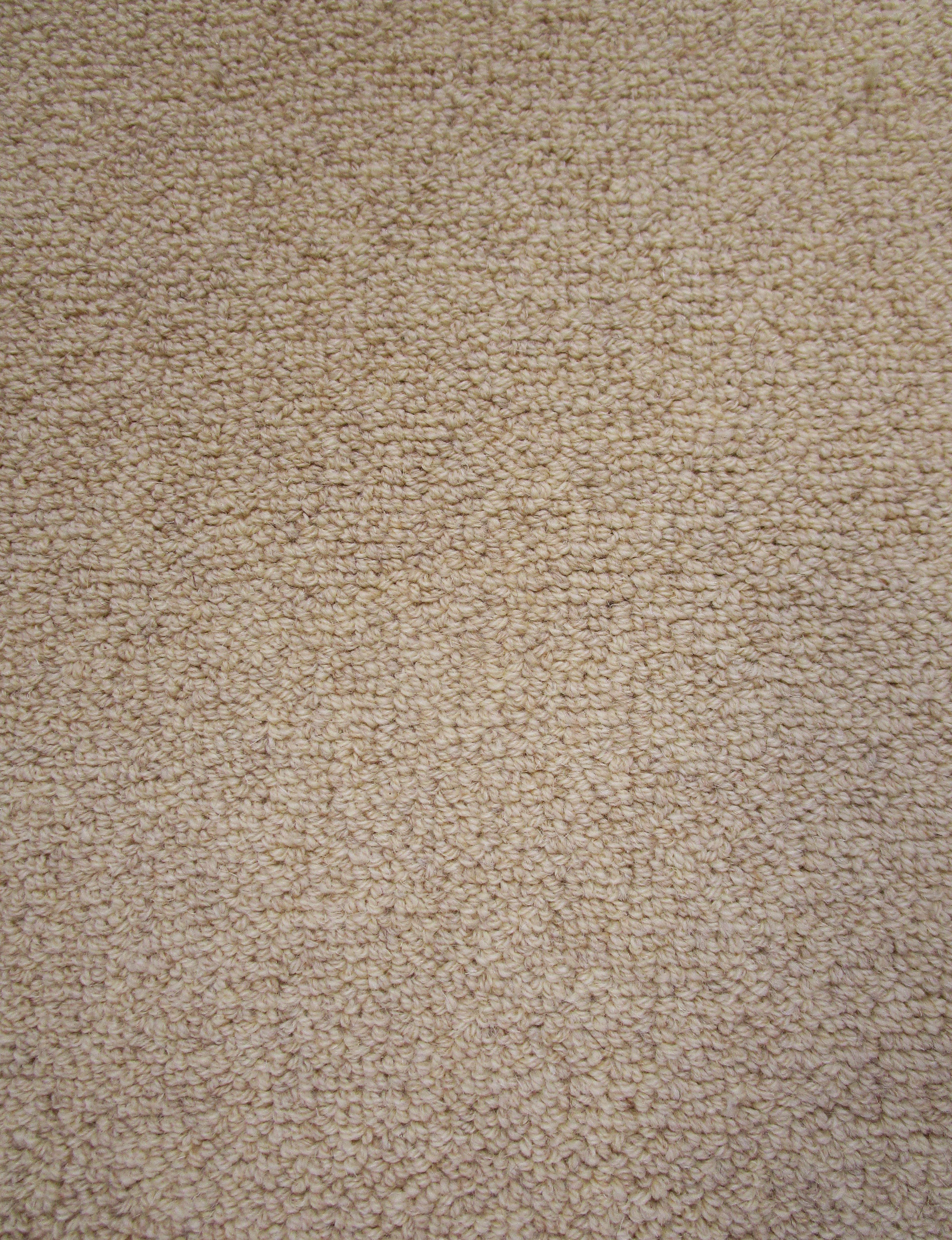 Z3 Sand Taupe Eco Friendly Loop Pile Wool Rug / Carpet