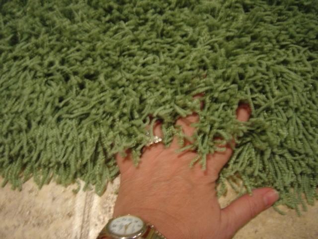 Lime shag rug