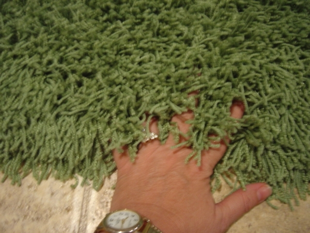 burgandy august lime - Shag Carpet