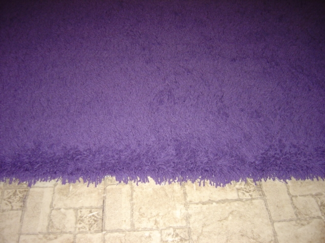 Purple Shag Rugs